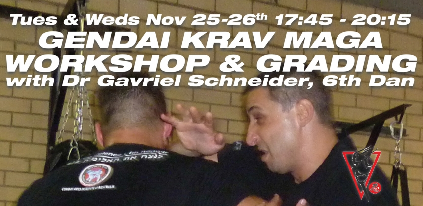Photos | Gendai Krav Maga Workshop & Grading Nov 2014