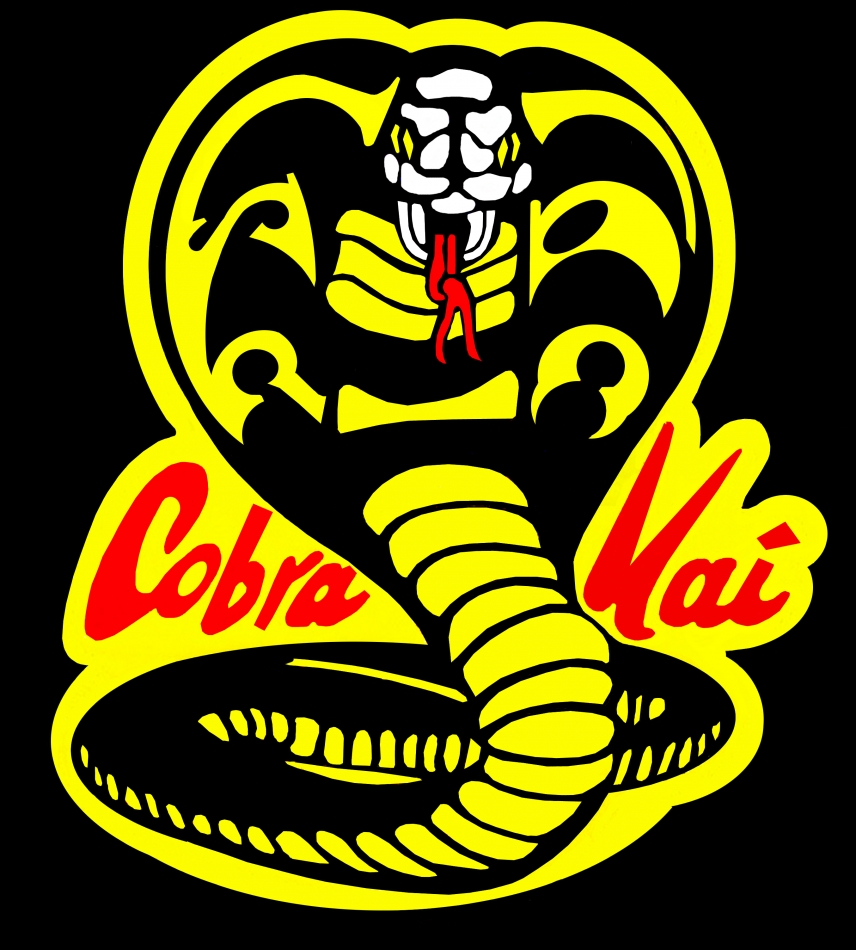 The Cobra Kai Principle: 3 Things Your Attackers do Better Than You!